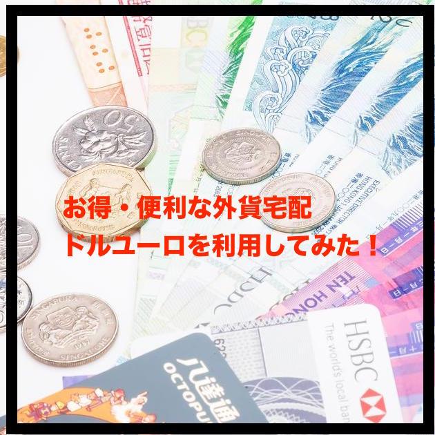 ドルユーロ紹介